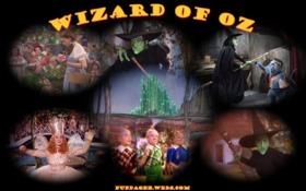 Wizard of OZ #1