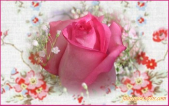 Floral Bouquets  Wallpapers by Mardi