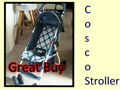 Visit Wal-Mart for a Cosco Stroller -  Convenient storage areas,  Retractable Sun Shade,  Very sturdy